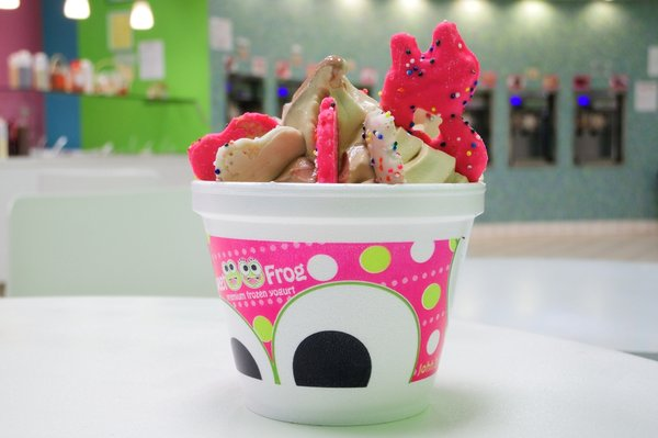 Sweet Frog Fort Worth